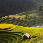 La Vallée de Muong Hoa au Vietnam