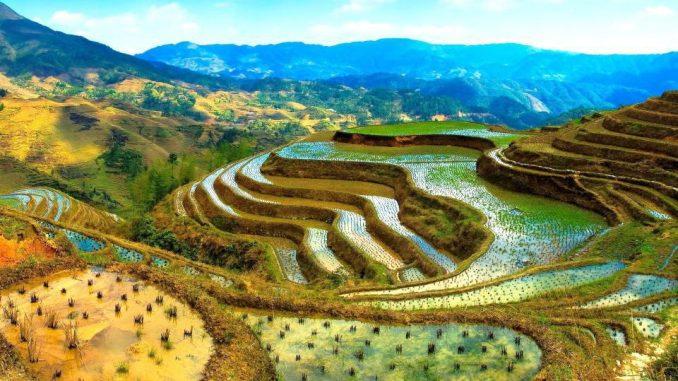 Rizieres de Banaue aux Philippines