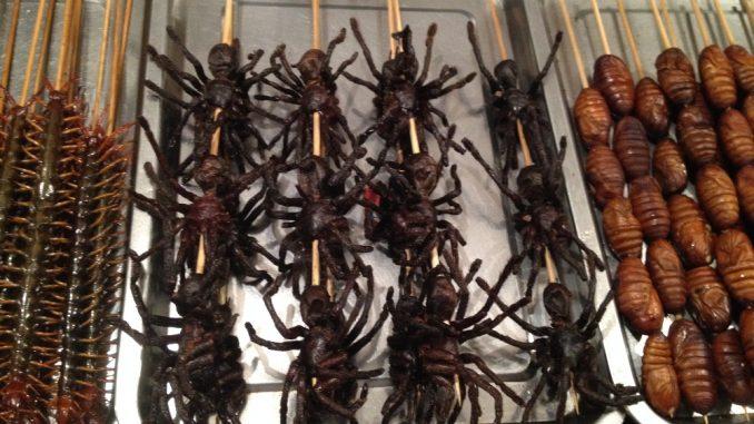 Manger insectes comestibles Bangkok