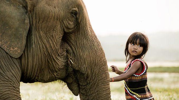 Kim Luan et son éléphant au Vietnam (Buon Ma Thuot) par Rehahn